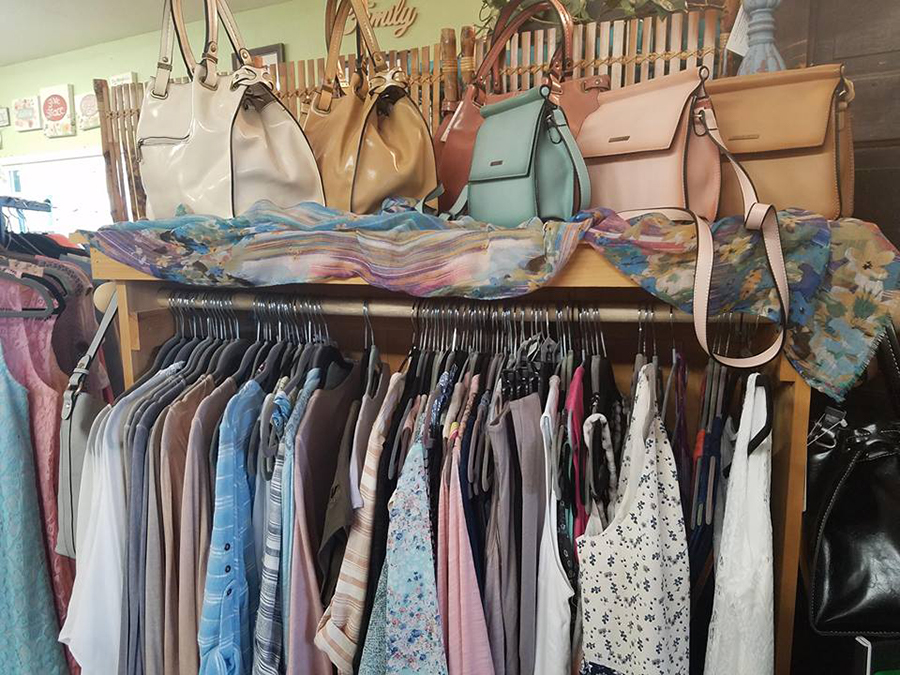 Alive & Well Boutique Handbags and Tops